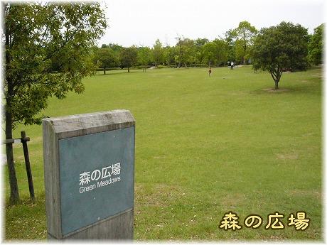 2008-06-15-20.jpg