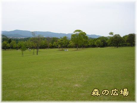 2008-06-15-21.jpg