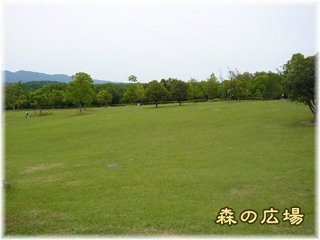 2008-06-15-24.jpg