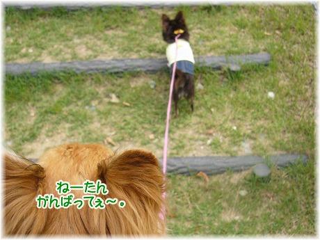 2008-06-15-26.jpg
