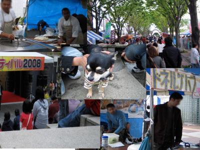 つくばフェスティバル20082