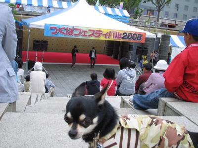 つくばフェスティバル20083