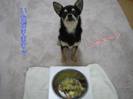 手作りごはん【ラム&野菜スープ編】5