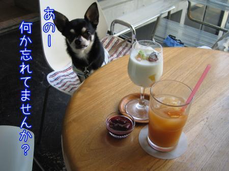 ステキ・カフェ。《NON》4