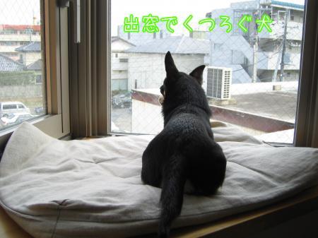出窓でヒヤッとニンマリ2