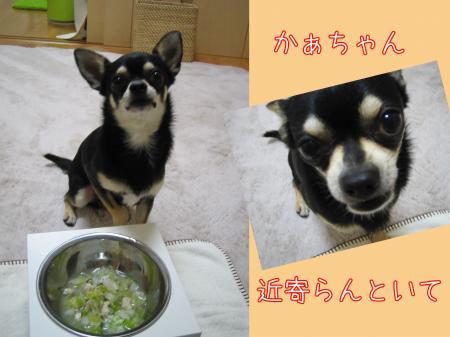 手作りごはん【チキン&野菜スープ編】3