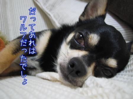 手作りごはん【がん予防編】4