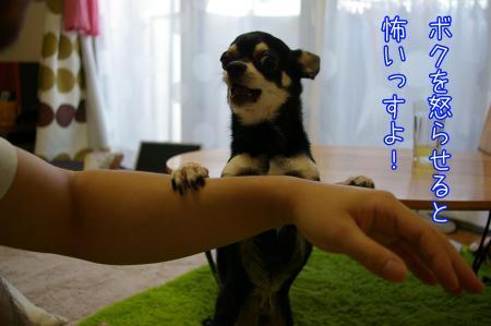 小顔マッサージ7