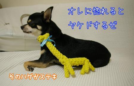 """""""新恋人""""現る5"""