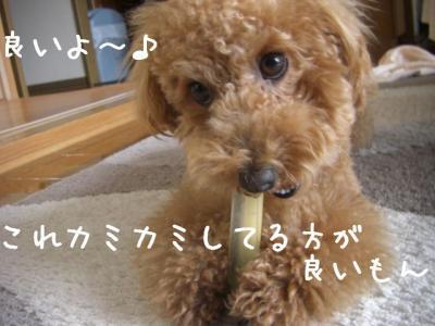 せんぷうき7