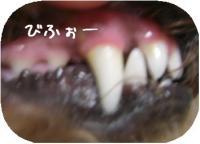 CIMG3094.jpg