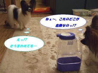 04-04_20080709150711.jpg