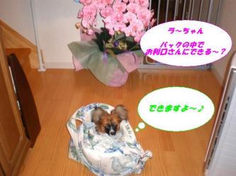 08-02_20080712090705.jpg