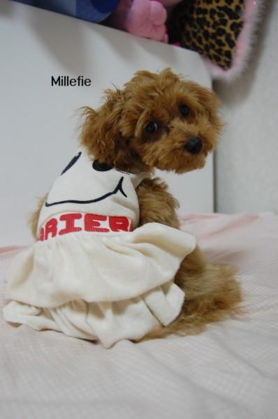 SMILFACEONE-PIECE Millefie