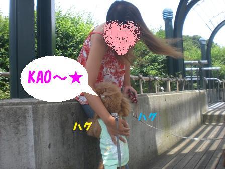 CIMG0482.jpg