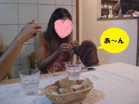 CIMG0607.jpg