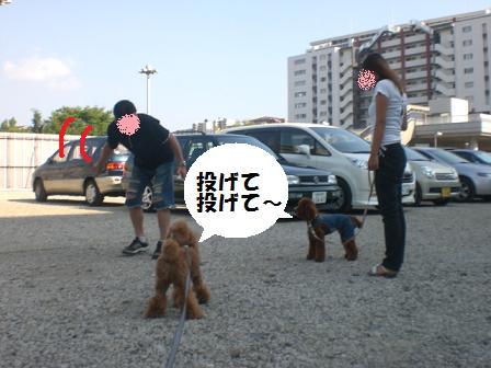 CIMG0643.jpg