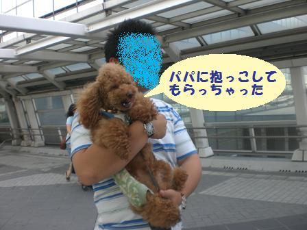CIMG0753_20080731232059.jpg