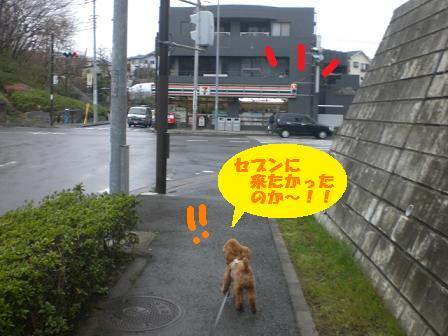 CIMG5108.jpg