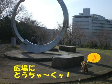 CIMG5162.jpg