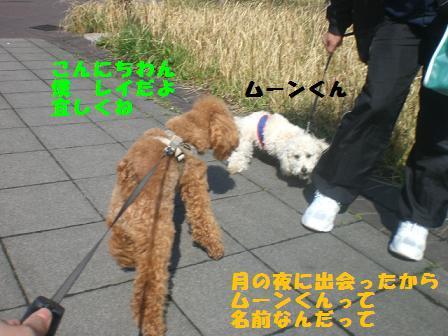 CIMG5445.jpg