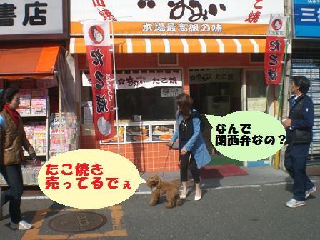 CIMG5481.jpg