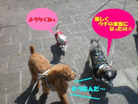 CIMG5698.jpg