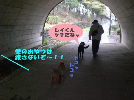 CIMG5860.jpg