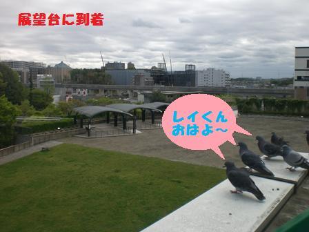 CIMG6248.jpg