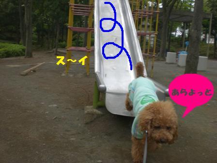 CIMG6328.jpg