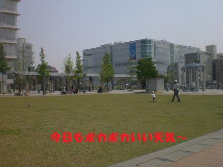 CIMG6706.jpg