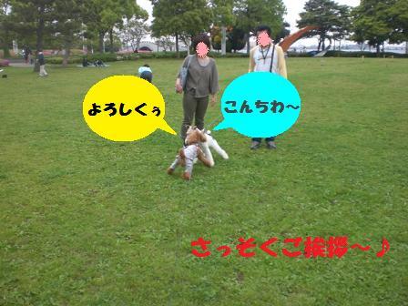 CIMG6964.jpg