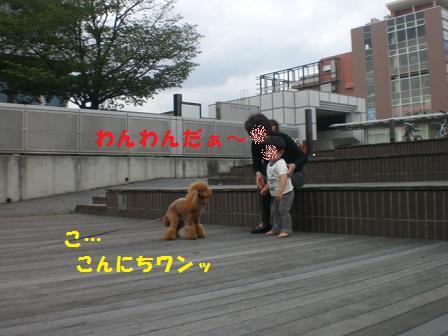 CIMG8498.jpg