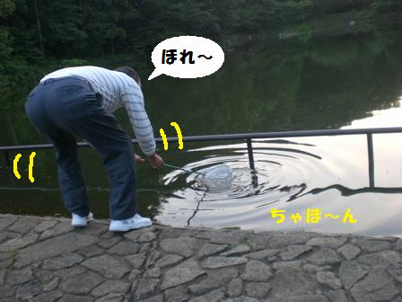 CIMG8688.jpg