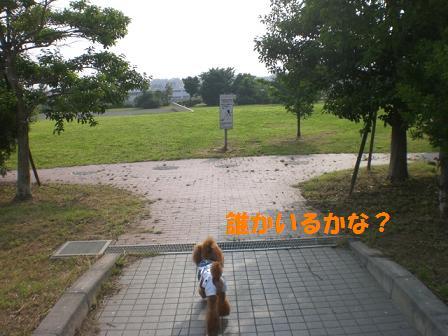CIMG8916.jpg