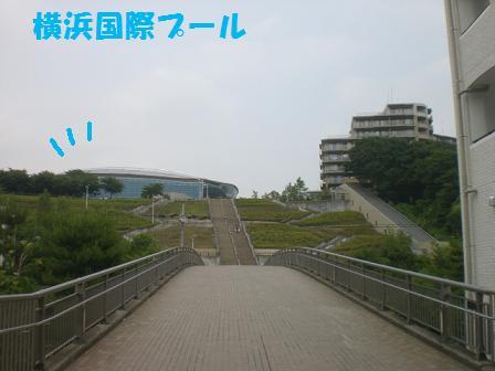CIMG9100.jpg