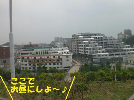 CIMG9106.jpg