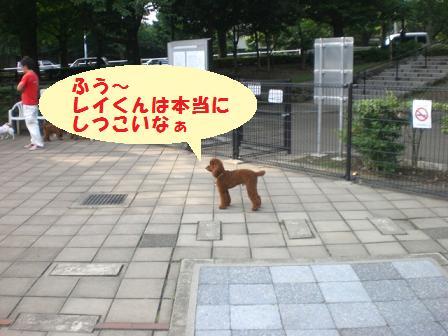 CIMG9224.jpg