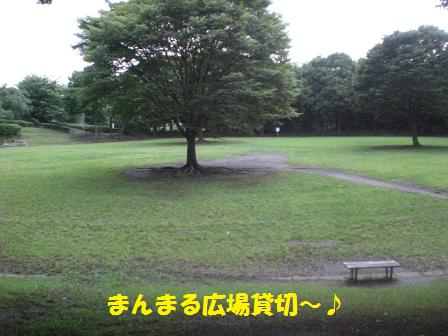 CIMG9358.jpg