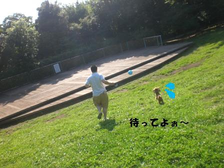 CIMG9796.jpg