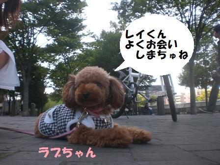CIMG9837.jpg