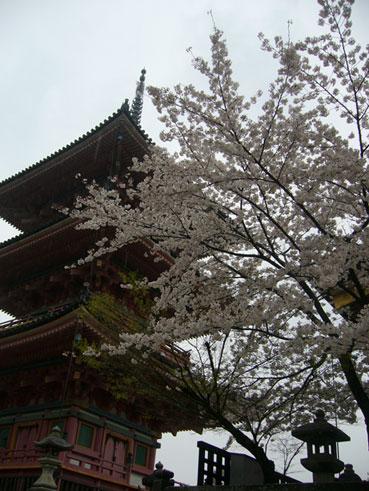 京都-aqaq