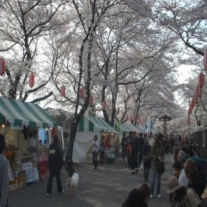 桜祭り人ごみ