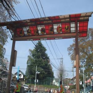桜祭り鳥居