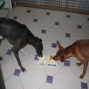 2ワンケーキ