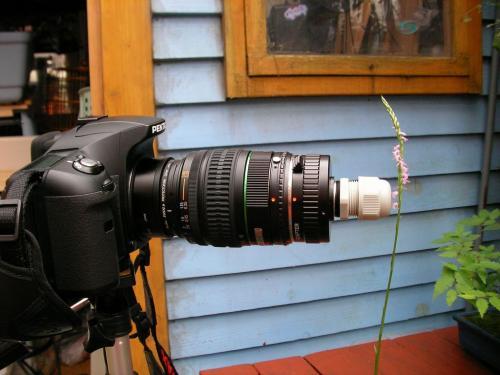 虫の眼レンズ 撮影状態 距離1