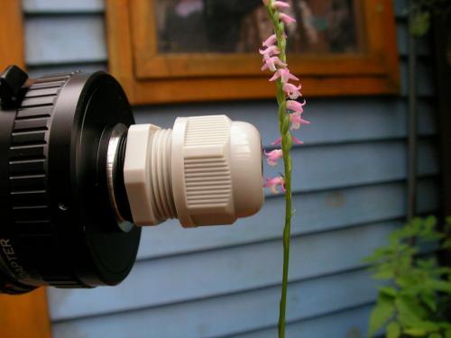 虫の眼レンズ 撮影状態 距離2