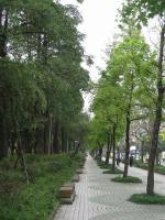 200803台湾 101