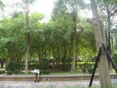 200803台湾 061