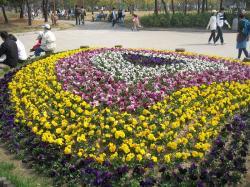 200804韓国 032